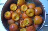 De grote Persimmon Experiment (op zoek naar persimon jelly)