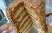 Hoe maak je een Mini Torte overgebleven pannenkoeken met