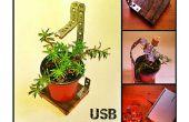 USB-Plant plat, de perfecte office-metgezel