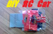 DIY 2WD RC Stunt Car v1.0
