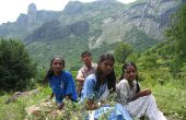 Groot in openlucht: Op zoek naar medicinale planten