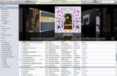 Hoe om te bewerken de namen van de nummers in je iTunes-bibliotheek?
