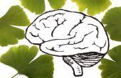5 nuttige Tips om gezonde hersenen voor eeuwig behouden