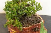 Keramische sculptuur: Boom stomp Bonsai Planter