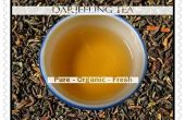 Hoe te brouwen Darjeeling thee