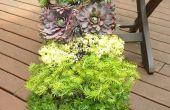 Verticale tuin w/Bright Green systeem