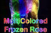 Veelkleurige bevroren Rose LED licht
