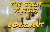 Het grote azijn Experiment