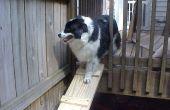 Hond oprit voor vlonders
