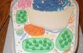 Plantaardige cel taart