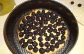Invasieve soorten eten: Himalaya Blackberry Custard taart