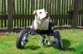 Aanpasbaar rolstoel voor gehandicapte honden