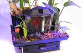 De Betta tuin - 5 Gallon Aquaponics systeem