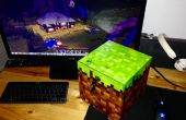 Procedure: Persoonlijke Minecraft Server in aangepaste blokkeren geval