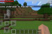 Hoe maak je een tijdelijke Minecraft Pe-Server