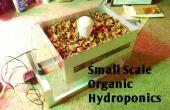 Biologische hydrocultuur, kleinschalige