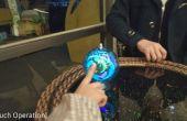 Dynamische transmissie - touch interactie - Kleur LED bal