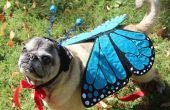 Huisdier kostuum vlinder