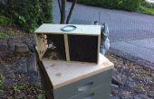 Een pakket van bijen stoten