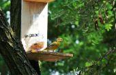 Zelf doseren Vogelhuis/waterbak
