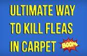 Hoe om te doden van de vlooien in het tapijt natuurlijk