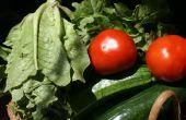 In het binnenland duurzame landbouw - bouw, planten en oogsten