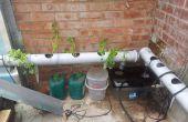 Hoe te installeren en uitvoeren van een hydrocultuur systeem