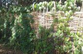 Het weven van een bamboe privacy hek