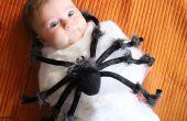 Aanval van de spin