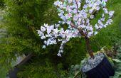 DIY Sakura - Cherry Blossom boom met papier (met video)