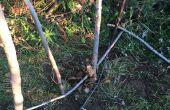 Een geweven twee Bin Compost stapel
