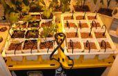 Hydroponic Tuin van de Drip voor groenten, kruiden of bloemen