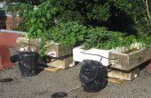 Beste damn organische gerecycleerd zonne-pomp hydrocultuur systeem