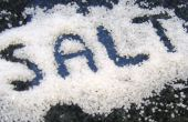 Ontcijferen van de kunst van het toevoegen van zout