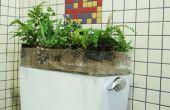 Toilet Garden