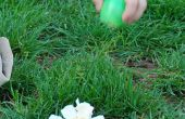 "How to Make ""Bloei"" Pasen eieren"