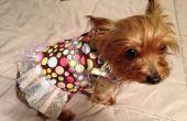 Zelfgemaakte hond jurk / Shirt voor Beginners