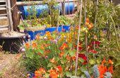 Reservoir opslaglocaties maken tuinieren makkelijk