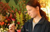 Clueless guy's gids voor het kopen van bloemen