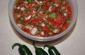 Laat enkele Salsa maken en dan kan het!