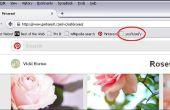 YouTube je Pinterest pinnen met YouTubeify