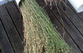 PVC-buizen voor de roting van vlas planten
