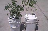 Hoe maak je een Single-emmer Water zelf gereglementeerde Vegatable Planter