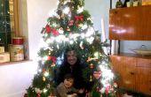 Tipi kerstboom