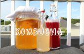 Dubbele gefermenteerde Kombucha