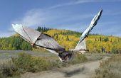 Giant Bats - hoe u kunt integreren twee foto's met behulp van Pixlr