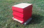 10-frame Langstroth Bee Hive