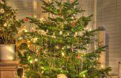 Neem een mooi HDR-beeld van je kerstboom
