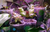 Zelf drenken mini cup planter