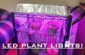 LED groeien licht voor kamerplanten voor $30! Eenvoudig!